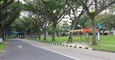 Opp Block 65 Bus Stop, along Jalan Tenteram