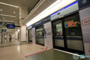 Downtown MRT Station - Platform B