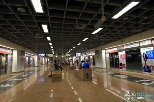 Chinatown MRT Station - NEL Platform level