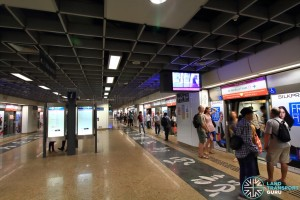 Chinatown MRT Station - NEL Platform level