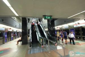 Dhoby Ghaut MRT Station - NSL Platform