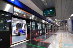 HarbourFront MRT Station - CCL Platform B