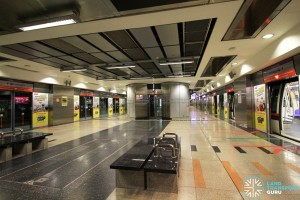 HarbourFront MRT Station - NEL Platform level