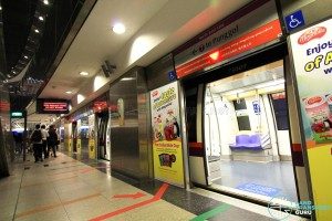 HarbourFront MRT Station - NEL Platform A
