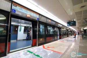 Marina Bay MRT Station - CCL Platform A
