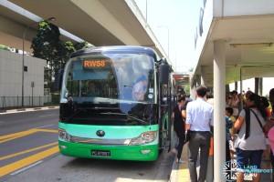 RWS8 queue at HarbourFront (Tong Tar operations)