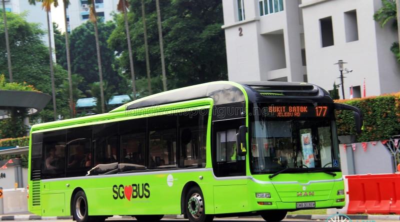 Tower Transit MAN A22 (SMB3036M) - Service 177