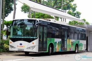 SG4001J - Go-Ahead BYD K9 at Ubi