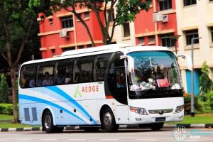 Aedge Premium 538