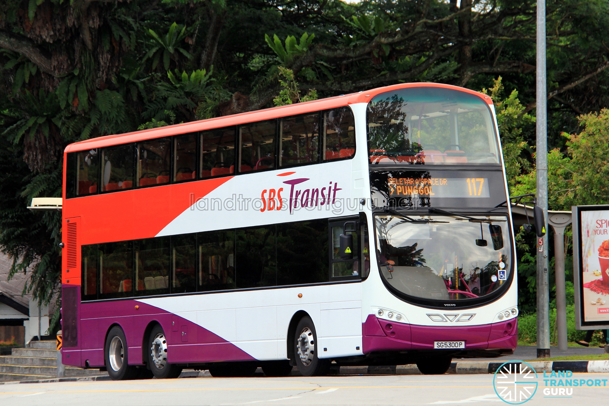 sbs transit bus service 117 | land transport guru