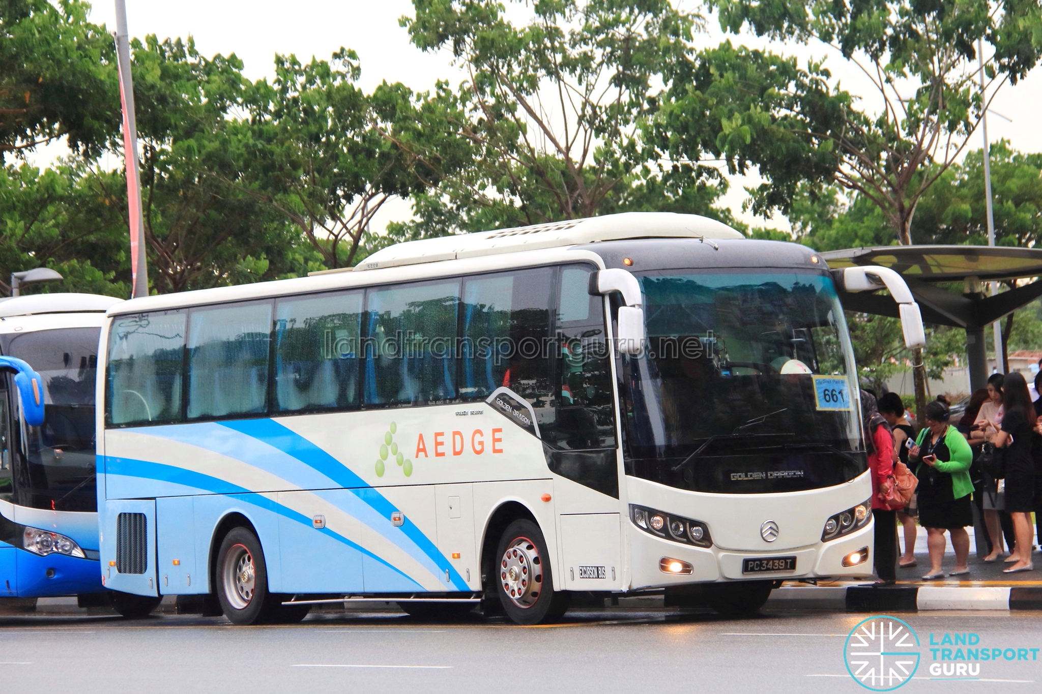 Aedge Holdings Golden Dragon XML6957J14B (PC3439T) - City Direct 661