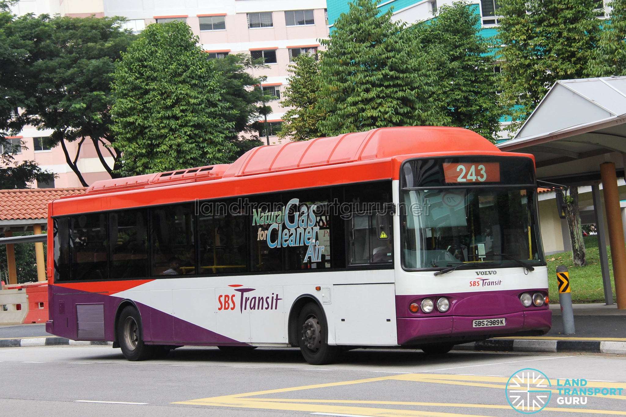 SBS Transit Feeder Bus Service 243G / 243W | Land Transport Guru