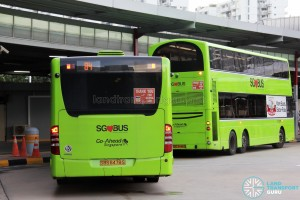 Go-Ahead Mercedes-Benz Citaro (SBS6478S) - Service 84 - Rear