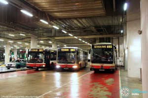 Resorts World Sentosa Bus Terminal - Parking area with NightRider services