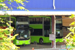 Gemilang Coachworks - Close-up of MAN A95 buses