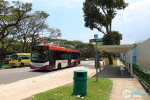 Bus Service 155 passing along Siglap Link