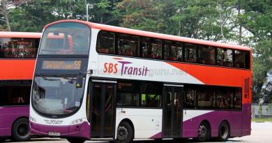 SBS Transit Volvo B9TL Wright (SBS3839D) - Service 55