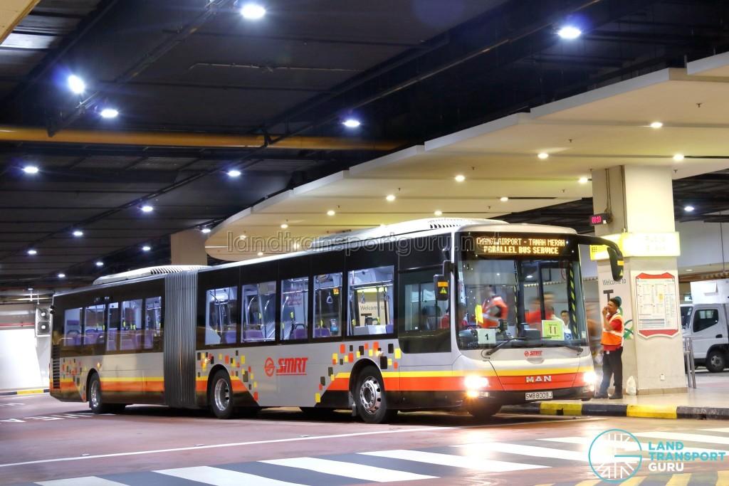 SMRT MAN NG363F A24 (SMB8009J): Tanah Merah – Changi Airport Parallel Bus Service (Direct)