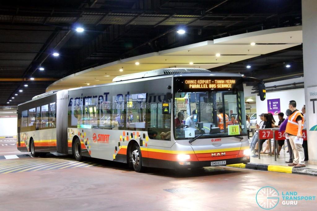 SMRT MAN NG363F A24 (SMB8013X): Tanah Merah – Changi Airport Parallel Bus Service (Direct)