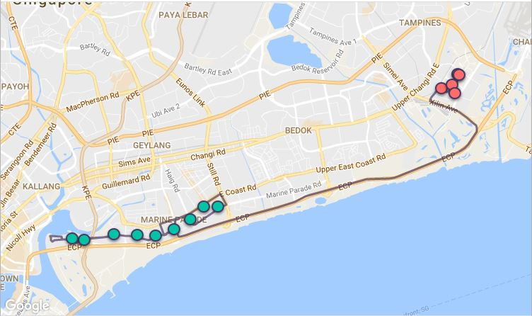 Route G19 at a glance. Map Image: Beeline.sg