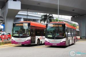Bus Service 160 at JB Sentral Terminal