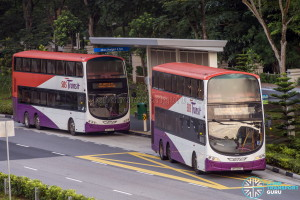 SBST Volvo B9TL Wright (SBS3219T and SBS7729L) - DTL Shuttle Service towards Chinatown