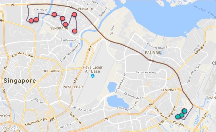 Route G58 at a glance. Map Image: Beeline.sg