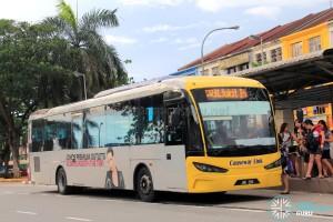 Causeway Link Sksbus SA12-300 (JNE290) – Service CW3L
