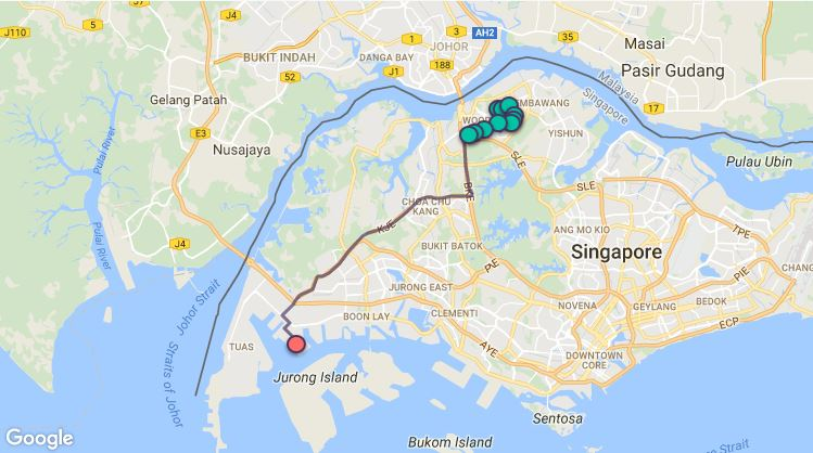 Route G113 at a glance. Map Image: Beeline.sg