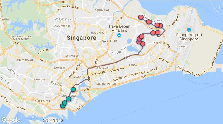 Route G95 at a glance. Map Image: Beeline.sg