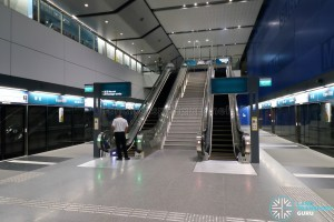 Expo MRT Station (DTL) - Platform level
