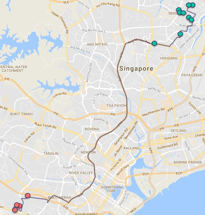 Route G129 at a glance. Map Image: Beeline.sg