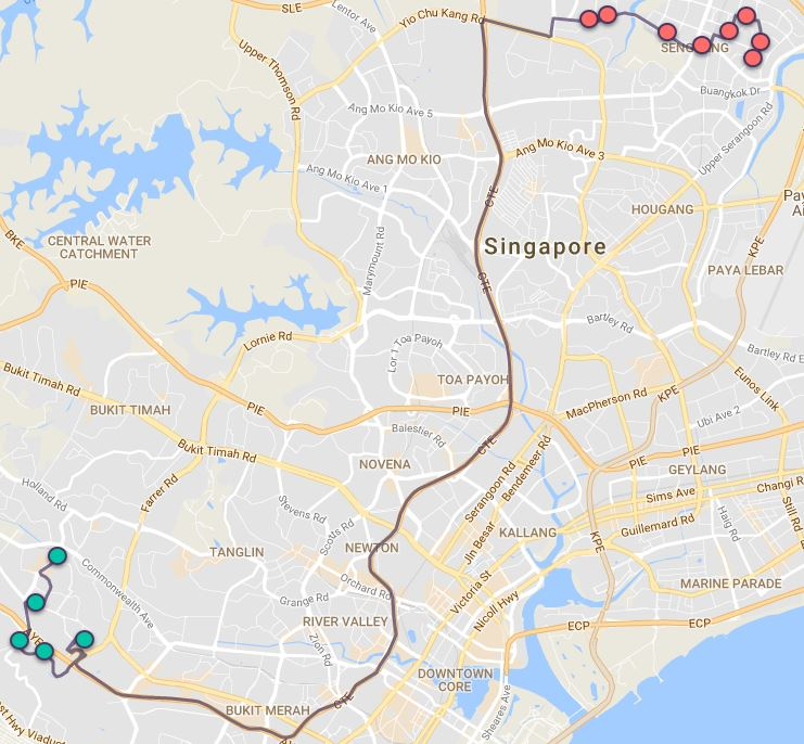 Route G137 at a glance. Map Image: Beeline.sg