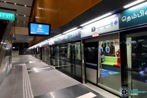 Tampines MRT Station - DTL Platform B