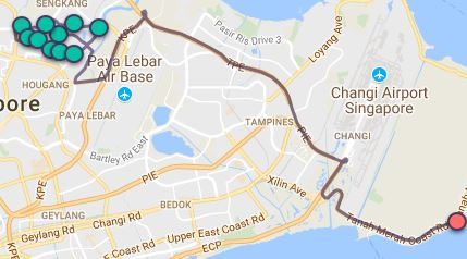 Route G117 at a glance. Map Image: Beeline.sg