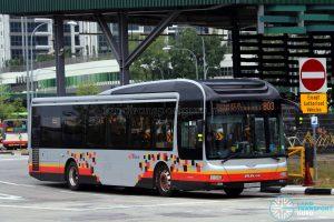 Service 803 - SBS Transit MAN A22 (SMB3085X)