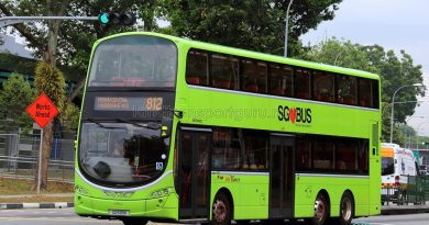 Service 812 - SBS Transit Volvo B9TL Wright (SG5131K)