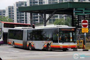 Service 800 - SBS Transit MAN A24 (SMB8006S)