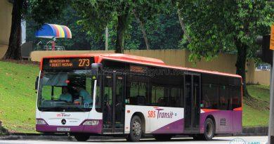 Service 273 - SBS Transit Mercedes-Benz Citaro (SBS6167P)