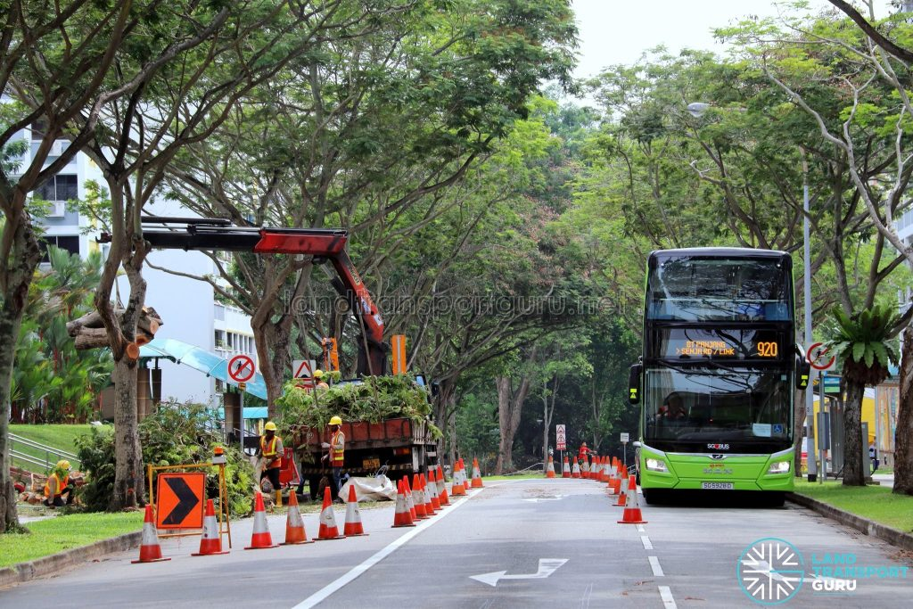 Tree pruning along Saujana Road to accommodate double-deck buses on Service 920