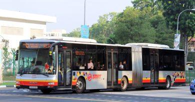 Service 903M - SMRT Buses MAN A24 (SMB8039Y)
