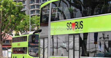 LTA MAN Lion's City DD and Volvo B9TL Lush Green Buses