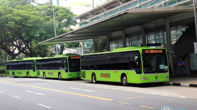 EWL Bridging Bus service operated by TF50 buses