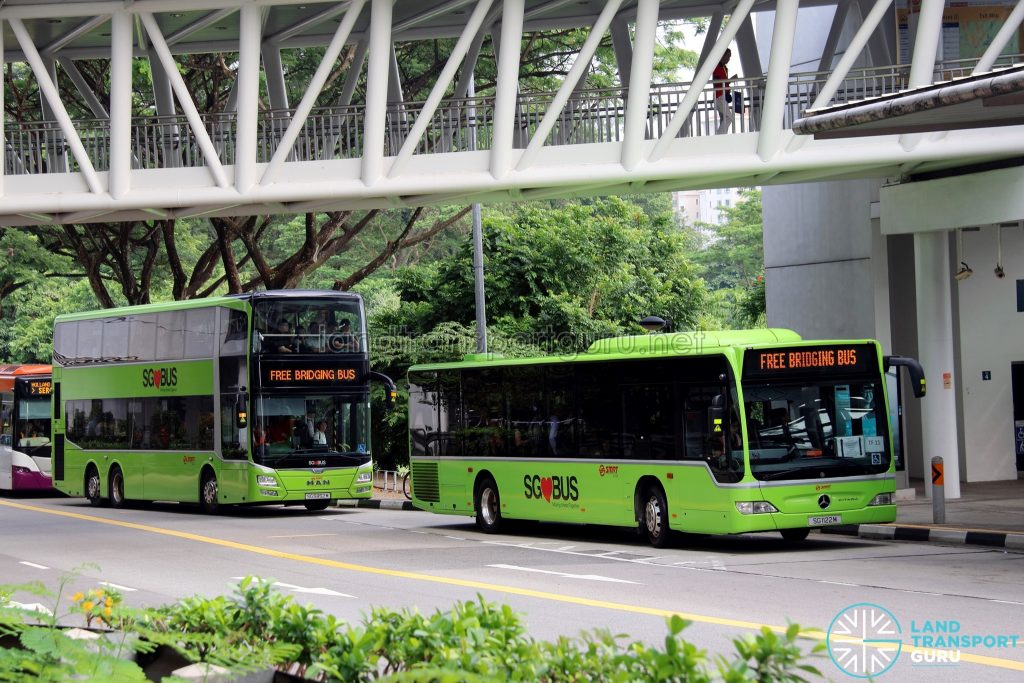 EWL Bridging Bus service operated by TF50 buses & regular SMRT buses