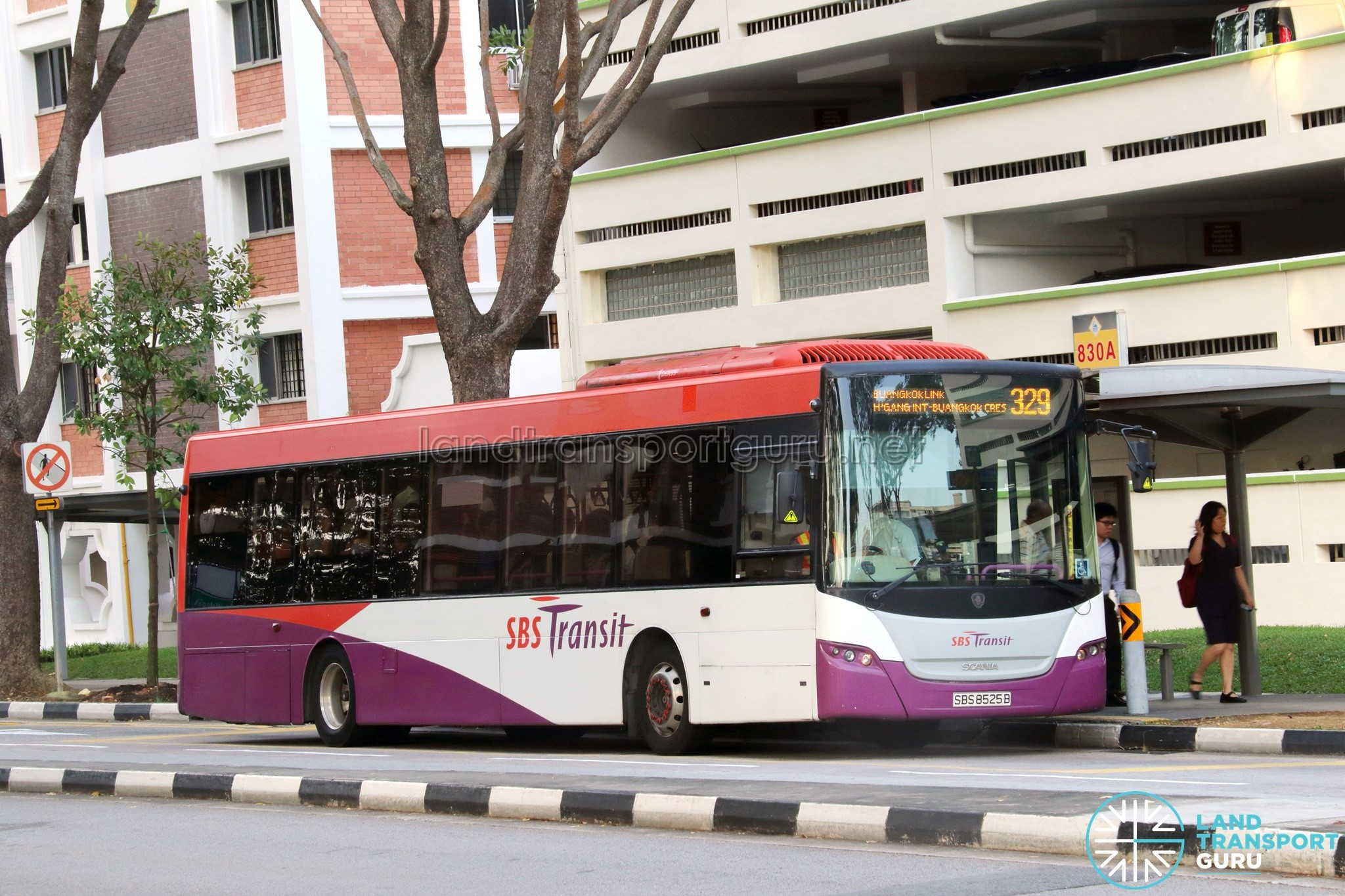 Bus 329 - SBS Transit Scania K230UB Euro IV (SBS8525B)