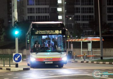 On-Demand Public Bus - Night Bus (CBD to Bedok and Tampines)