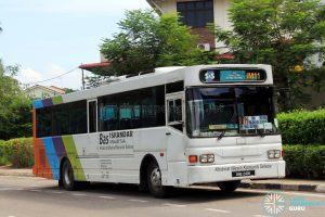 S&S International Nissan Diesel JP251 (BHQ2405) - Route IM11