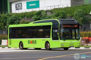 Bus 805 - SBS Transit MAN A22 (SMB3094U)