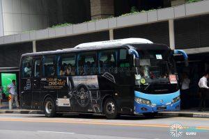 Premium 566 - Golden Dragon XML6957J14B AUTO (CB7171Y)