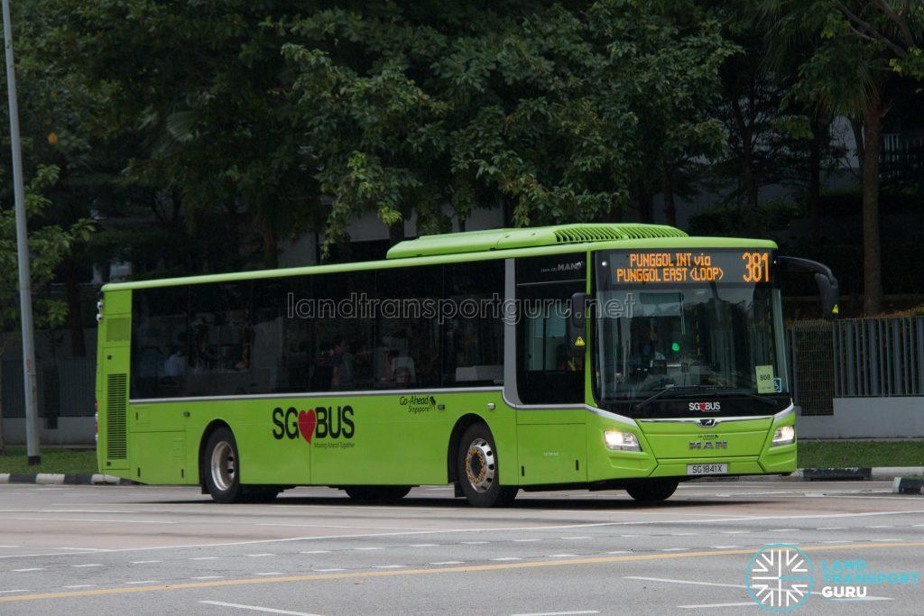 Bus 381: Go-Ahead MAN Lion's City A22 (SG1841X)